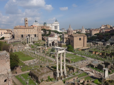 View of forum from the Palatine